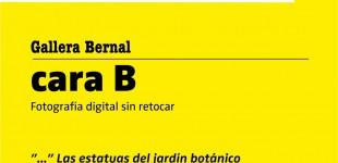 CARTELA CARA B